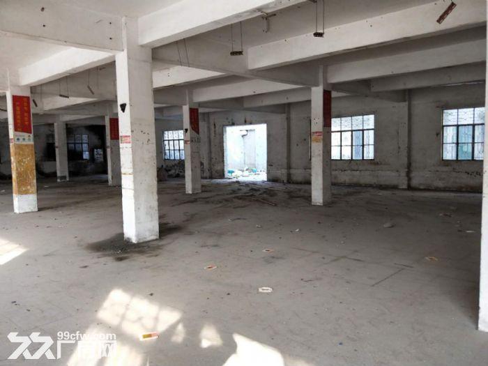 南朗标准厂房3600方出租,电量大,易招工-图(3)