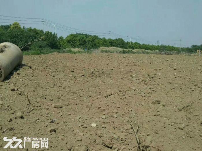 青龙工业净地40亩出售-图(1)