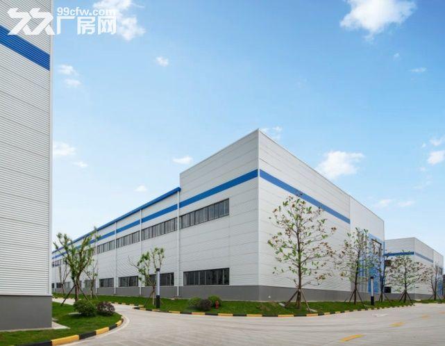 九龙坡1000~4000平米,标准厂房出售出租-图(3)