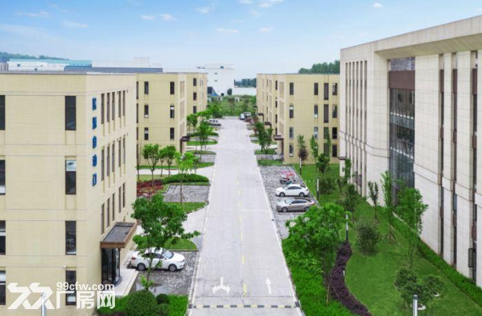 九龙坡1000~4000平米,标准厂房出售出租-图(5)