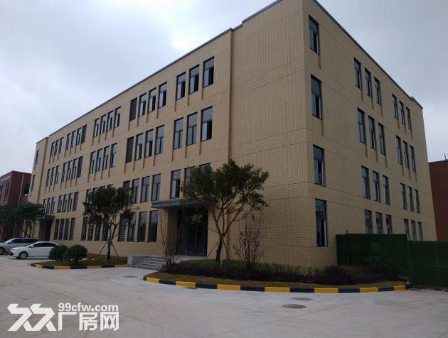 九龙坡1000~4000平米,标准厂房出售出租-图(6)