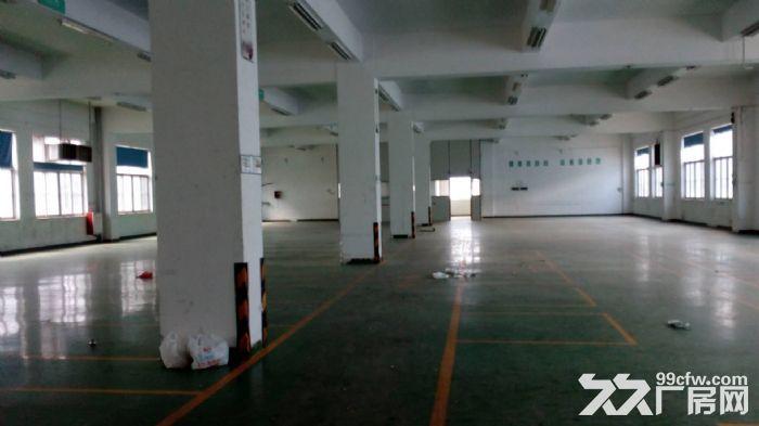 [直租]香洲600平方3楼厂房出租(高4.5米-图(2)