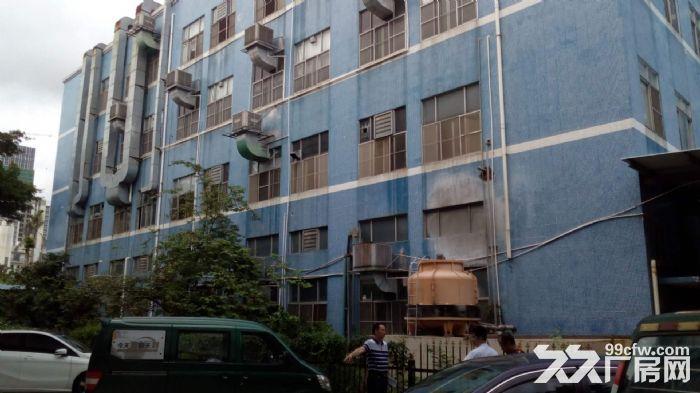 [直租]香洲600平方3楼厂房出租(高4.5米-图(1)