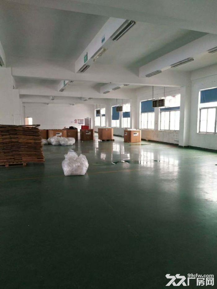 [直租]香洲600平方3楼厂房出租(高4.5米-图(4)