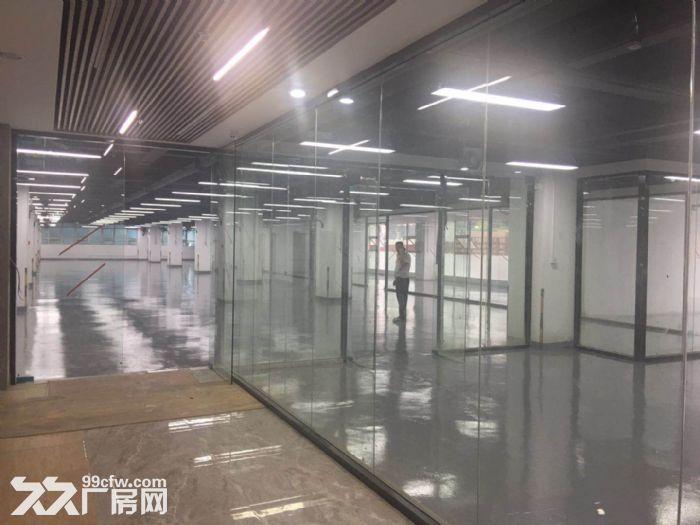 西丽白芒关口附近1~6层5万平500平起分租厂房出租-图(4)