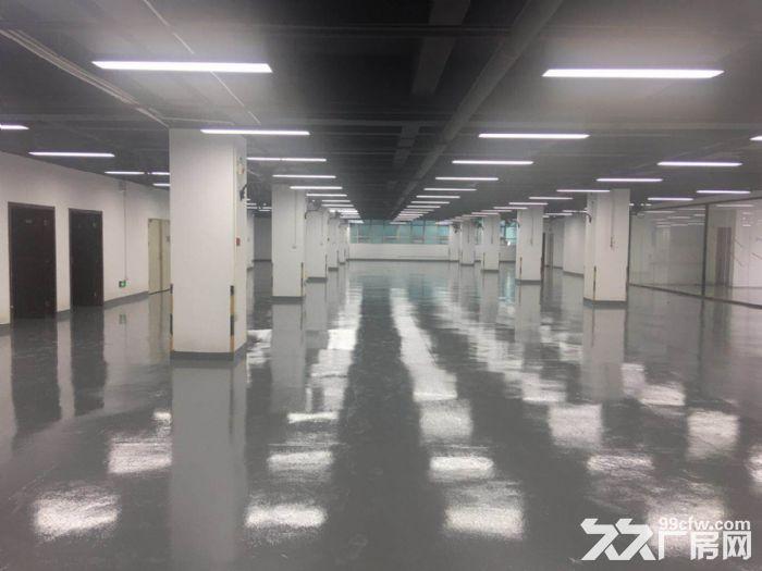 西丽白芒关口附近1~6层5万平500平起分租厂房出租-图(5)