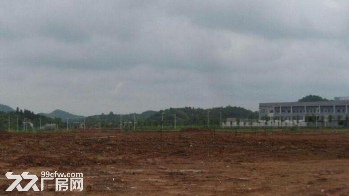 惠州市惠东县出售75亩国有工业土地双证齐全优选高新企业-图(1)