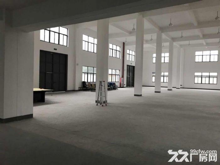 出售市场上稀缺的佘山工业区独栋双层厂房-图(4)