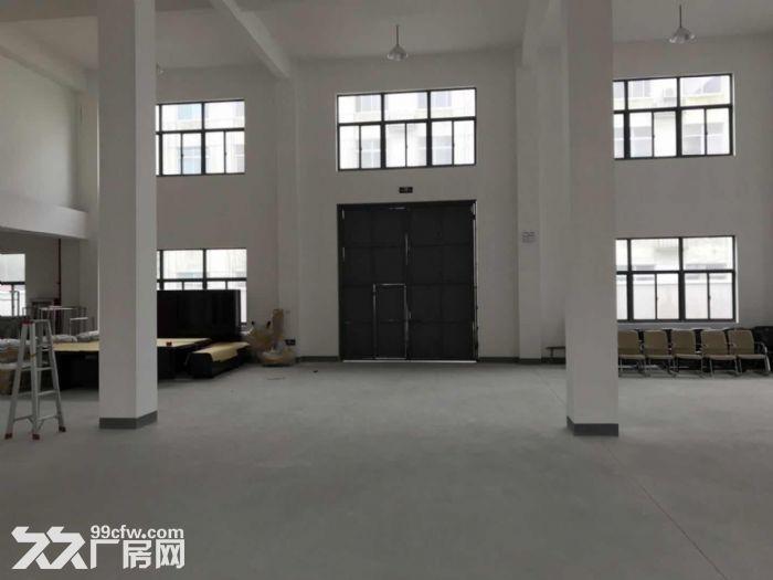 出售市场上稀缺的佘山工业区独栋双层厂房-图(5)