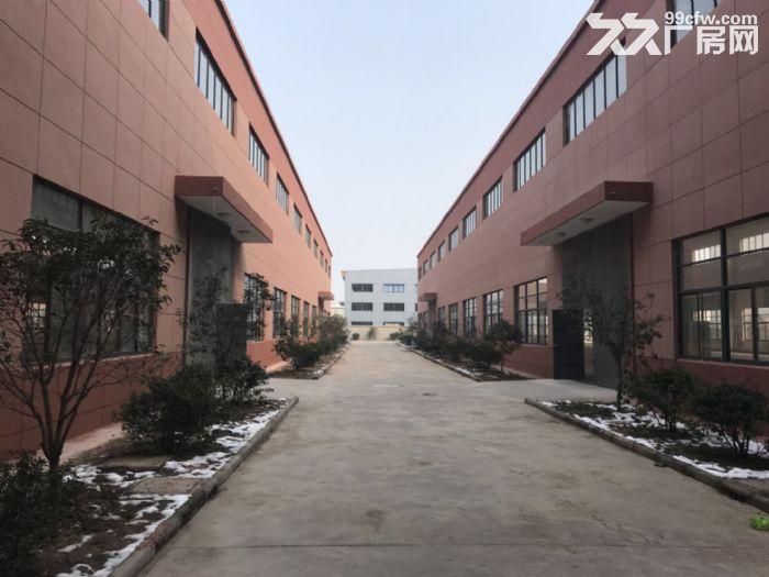 出售市场上稀缺的佘山工业区独栋双层厂房-图(7)
