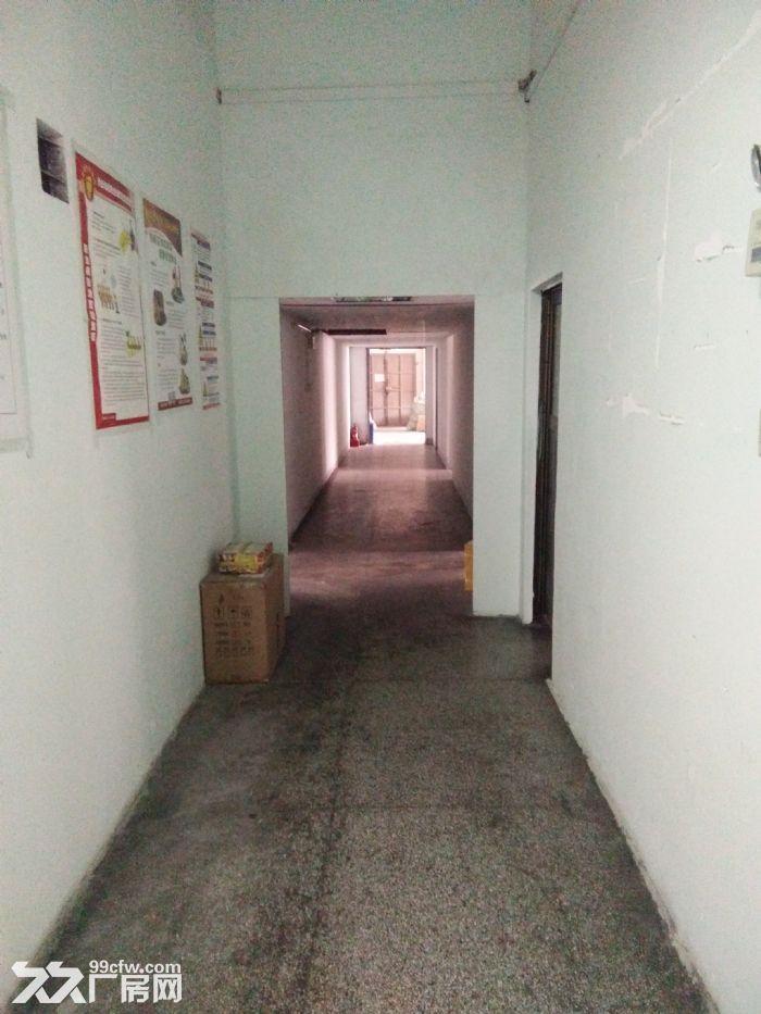 标准工业厂房分租三百平方米-图(2)