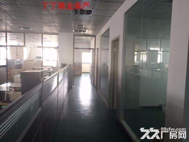 高新新型工业园570平标准厂房出租便宜出租-图(3)