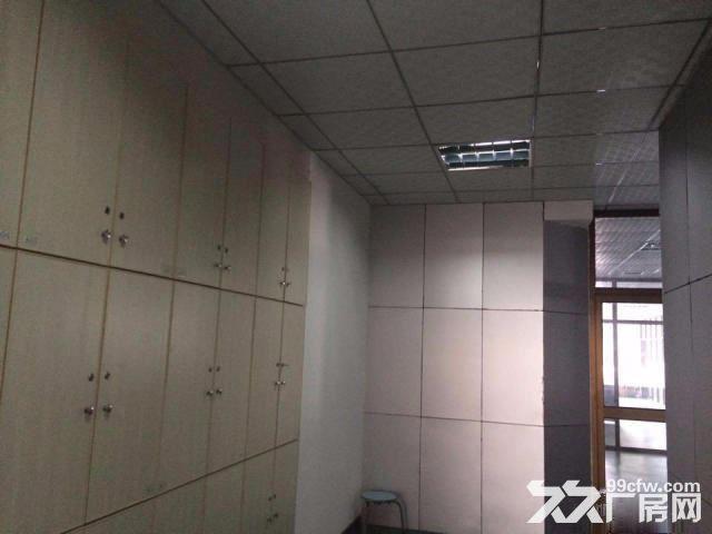 高新新型工业园570平标准厂房出租便宜出租-图(4)