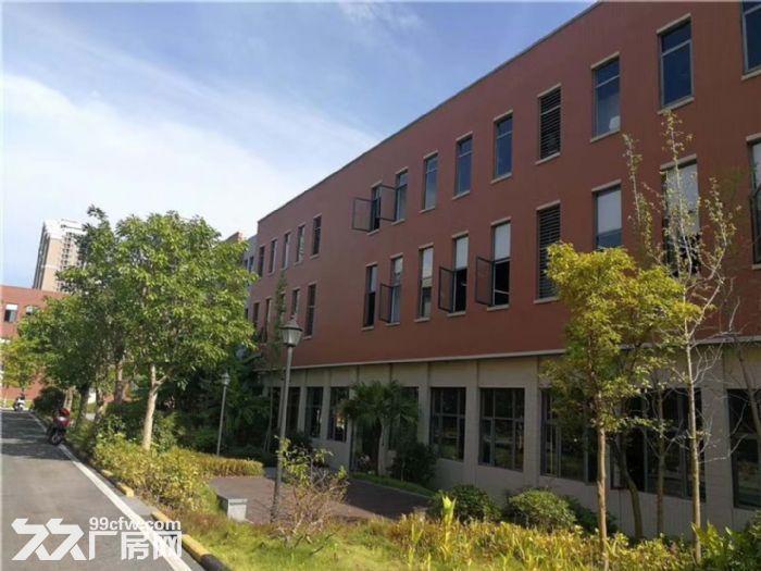 大学城标准厂房,靠近广达、英业达、高速口、轻轨站-图(4)