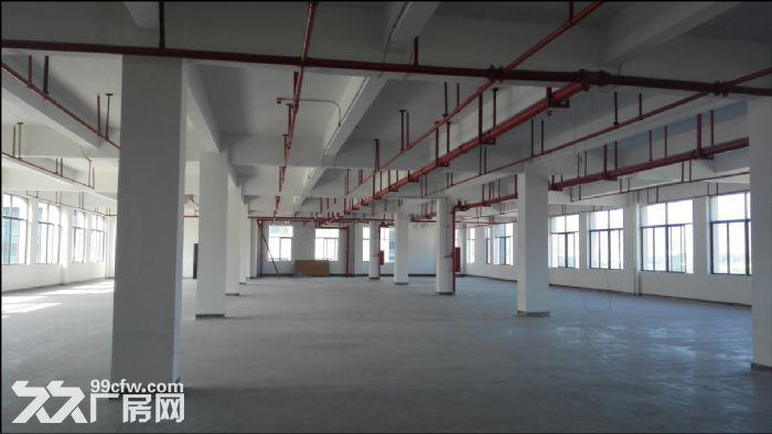 科学城800至28000平方标准厂房招租-图(2)