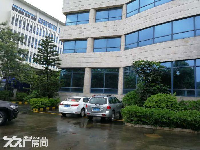 科学城800至28000平方标准厂房招租-图(3)