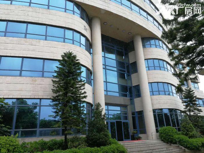 科学城800至28000平方标准厂房招租-图(4)
