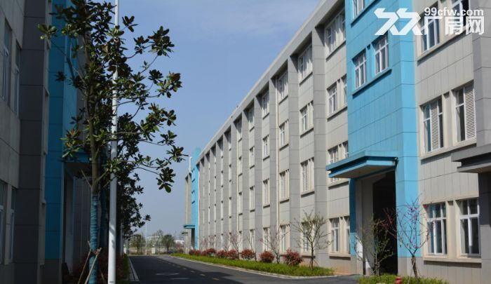 常德专业电镀表面处理产业园厂房出售-图(4)