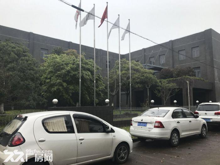 松江九亭104板块占地11亩独门独院厂房出售-图(2)