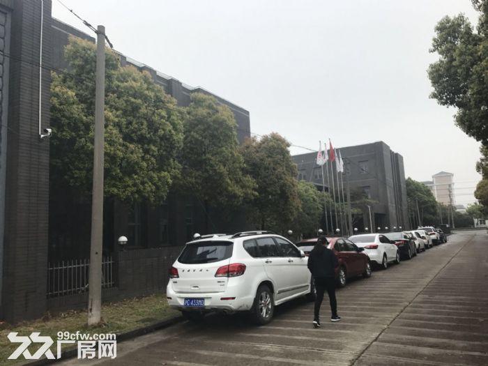 松江九亭104板块占地11亩独门独院厂房出售-图(3)