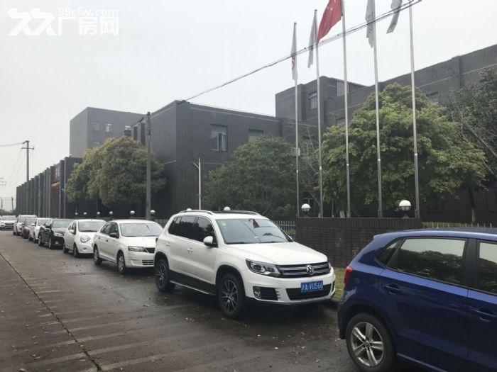 松江九亭104板块占地11亩独门独院厂房出售-图(4)