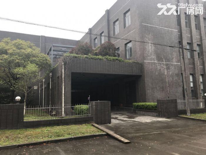 松江九亭104板块占地11亩独门独院厂房出售-图(5)