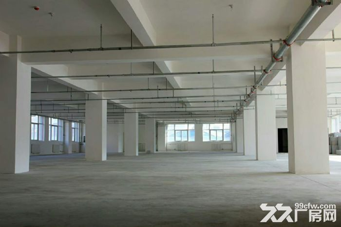(出租)新罗东宝山带电梯3600平米框架结构-图(1)