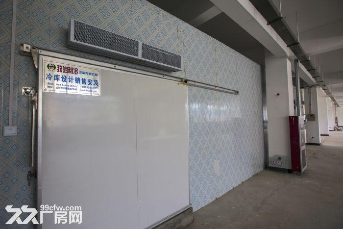 优质标准化厂房对外出租-图(2)