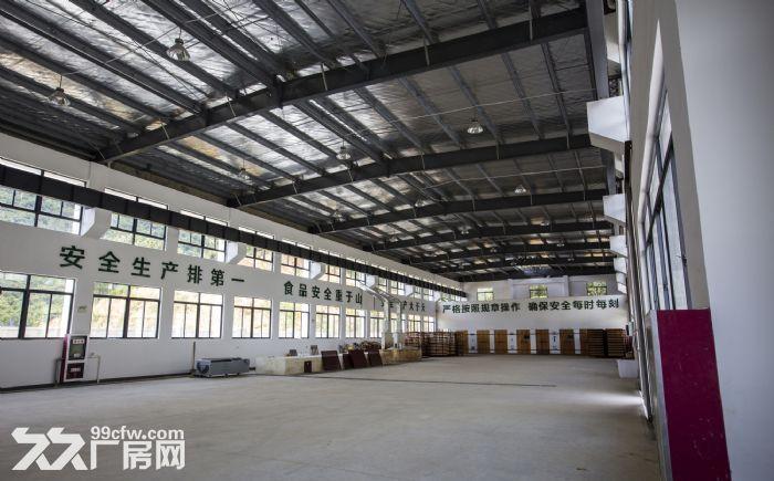 优质标准化厂房对外出租-图(4)