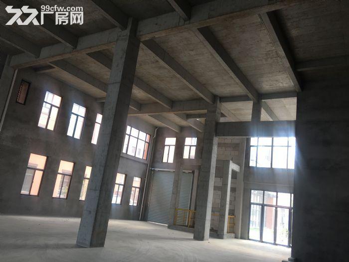 江北区环境最好厂房!价格实在优惠-图(4)