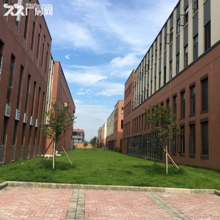 江北区环境最好厂房!价格实在优惠-图(6)