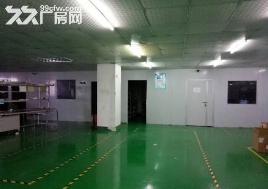 长安新出带装修760平无尘车间厂房招租-图(2)