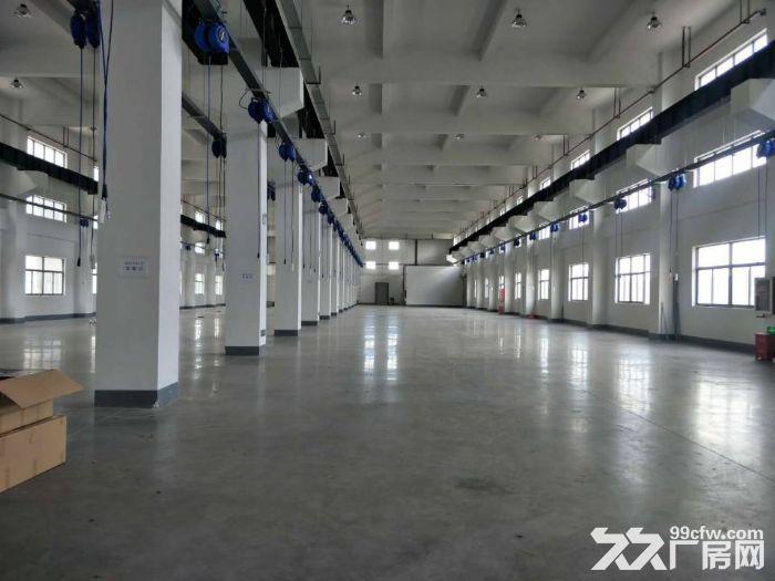 吴中胥口独栋单层3000平米机械标准厂房出租-图(1)
