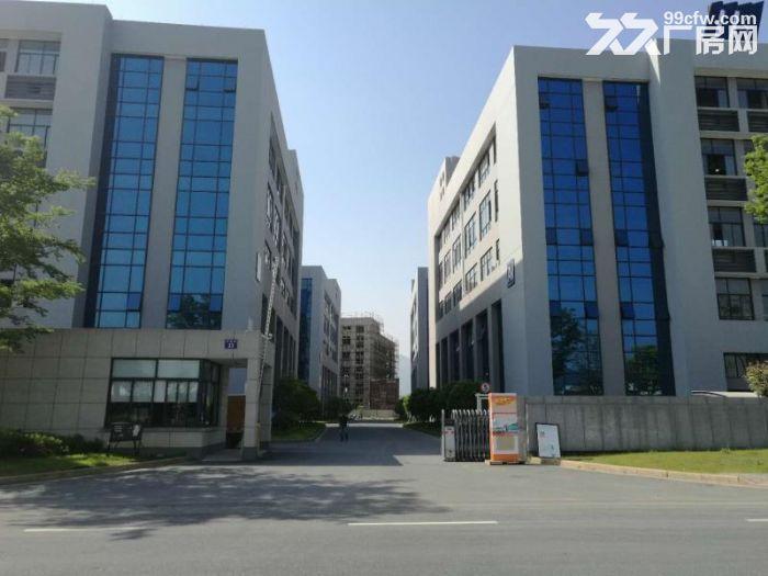 临安青山湖科技城4万方全新标准厂房出租-图(1)
