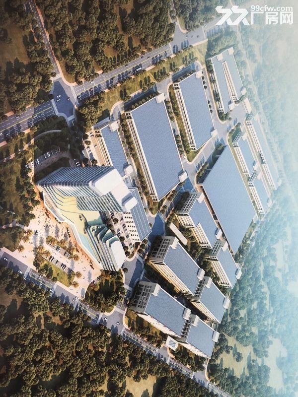临安青山湖科技城4万方全新标准厂房出租-图(3)