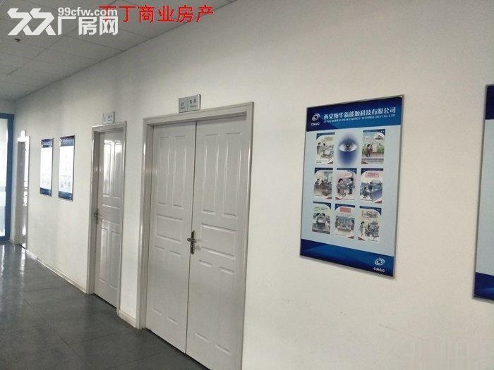 西高新高新新型工业园地铁沿线精装电子厂房564平米-图(4)