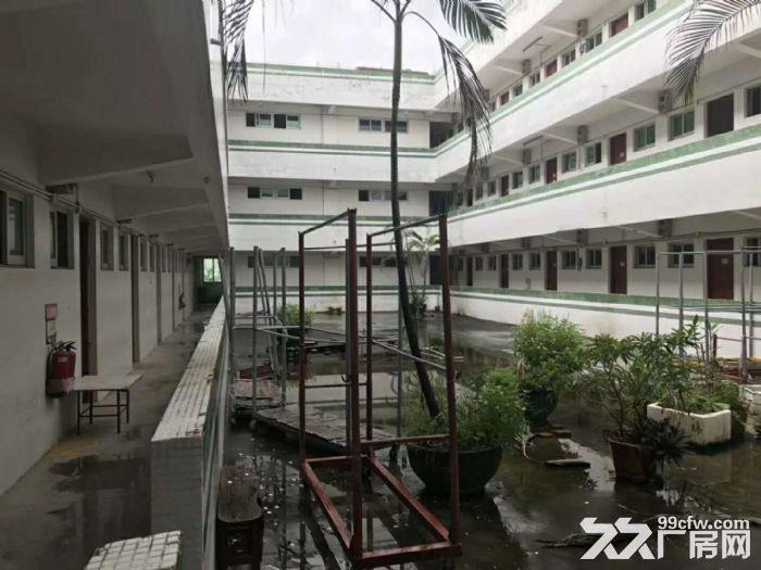 三乡平东空出独门独院标准厂房7200方,现成宿舍办公楼-图(2)