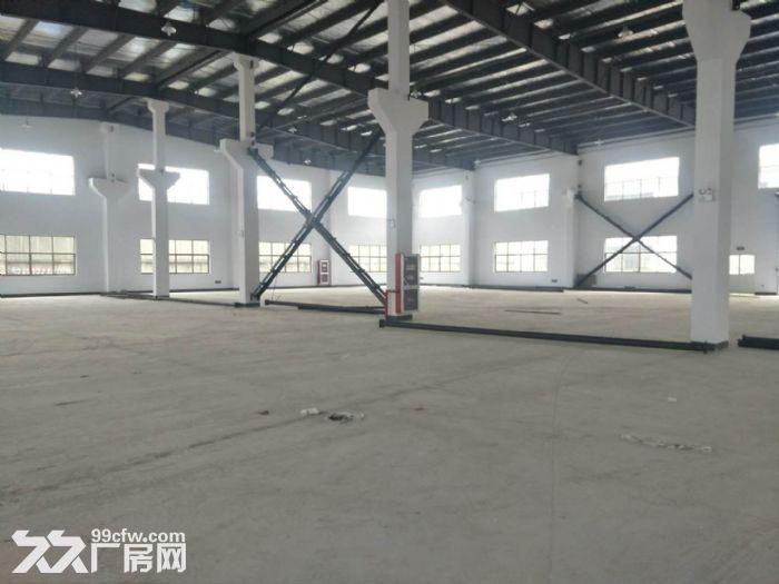 自有苏州工业园区澄浦路8号1300平米厂房出租-图(3)