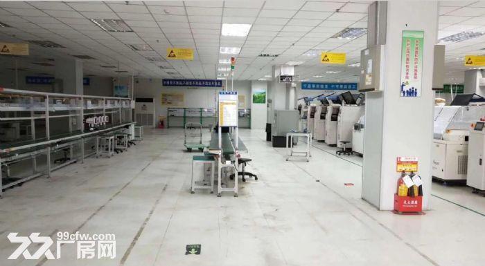 塘厦花园厂房靠近深圳5000独院招租可分组-图(2)
