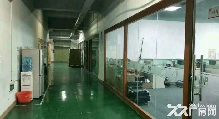 原房东独院6千平方带地坪漆办公室水电装修-图(3)