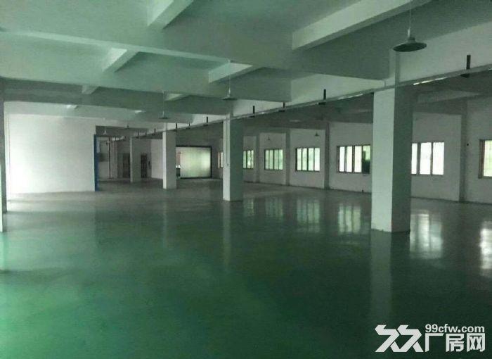原房东独院6千平方带地坪漆办公室水电装修-图(7)