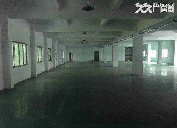 原房东独院6千平方带地坪漆办公室水电装修-图(6)