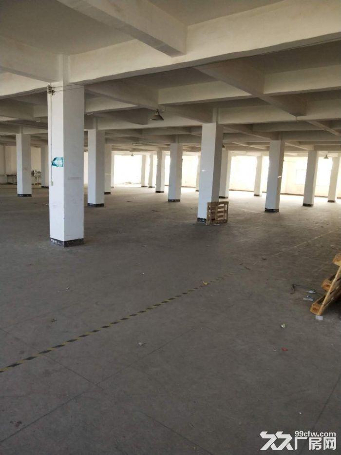 海沧村大路头厂房三楼1600平米4楼1300平一平-图(1)