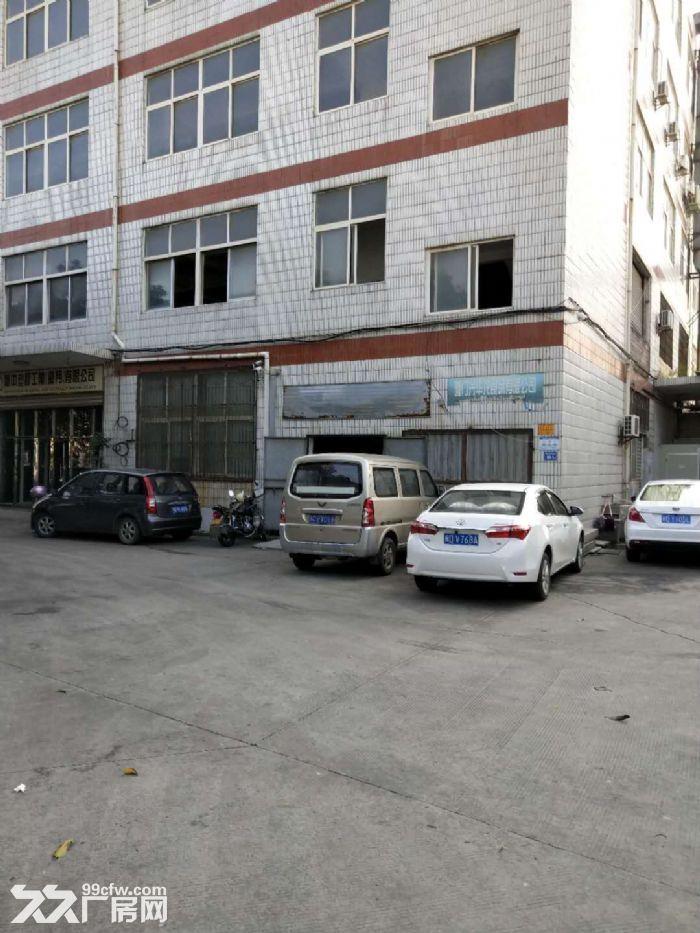 海沧村大路头厂房三楼1600平米4楼1300平一平-图(4)