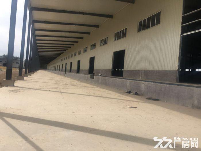 正规高台库总面积32000平米,5000平起租不拆,可註册-图(2)