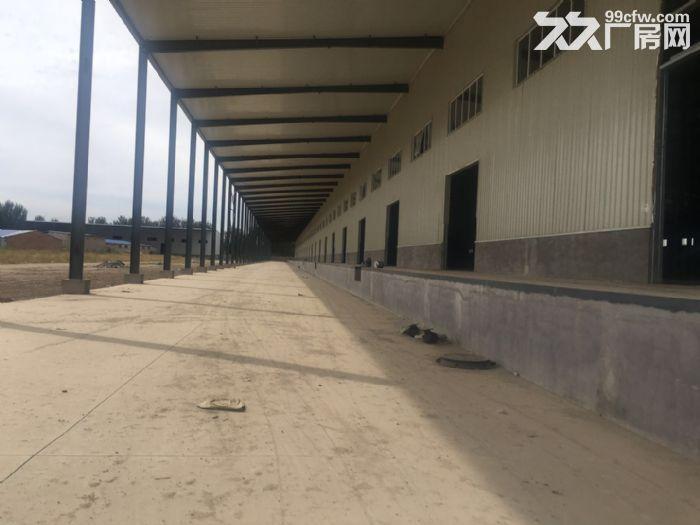 正规高台库总面积32000平米,5000平起租不拆,可註册-图(3)