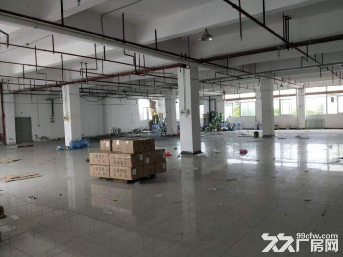 翔安火炬园二期标准厂房出租1200平-图(2)