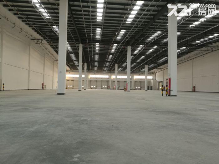 吴江开发区独栋单层15000平高端物流园丙二类仓库图片