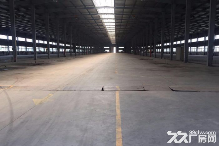 嘉善姚庄工业园4800平方钢结构厂房层高9米,价格面议-图(1)