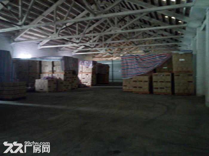 石井八方物流附近仓库出租-图(2)